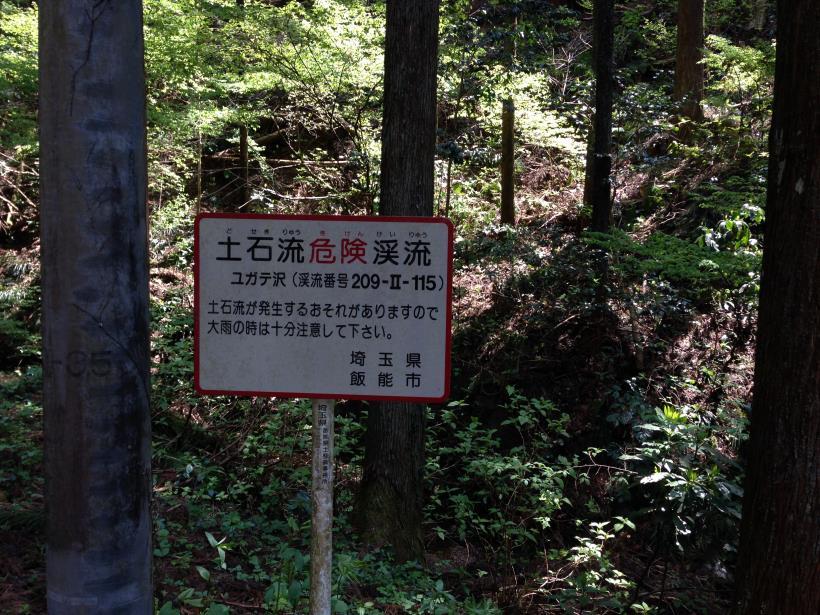 mtsukura10.jpg