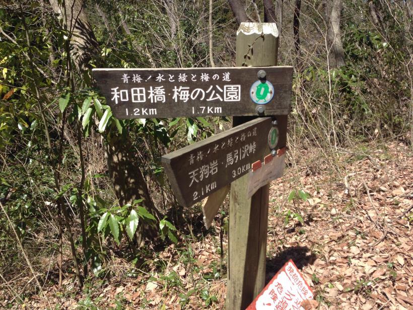namikiirinagabuti24.jpg