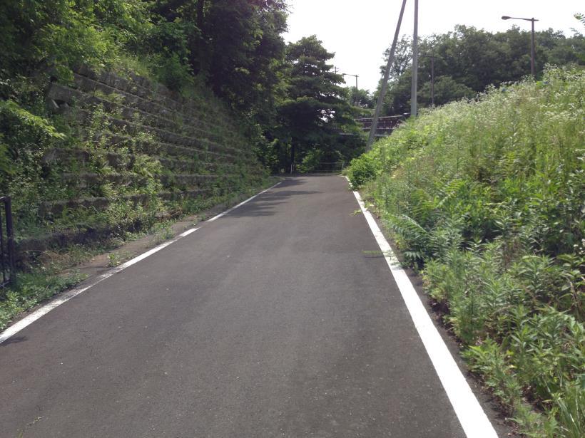 nanamagari07.jpg