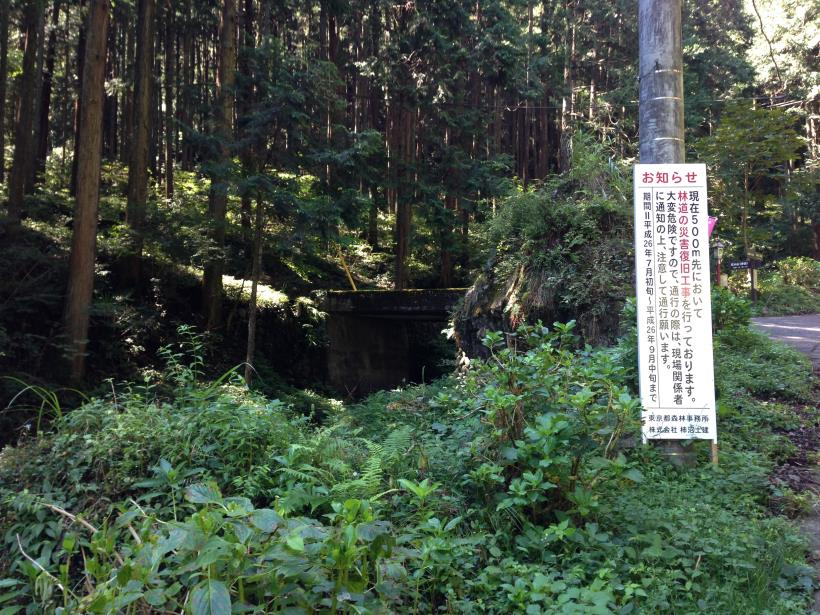 natyagiri06.jpg