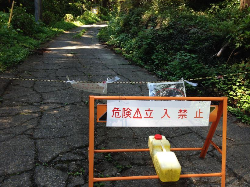 natyagiri10.jpg