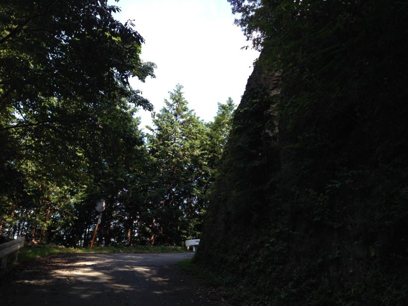 natyagiri26.jpg