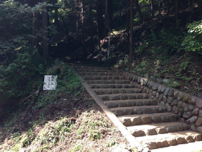 natyagiri46.jpg