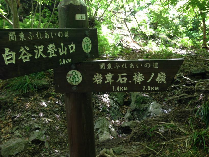 shiratanisawaCourse40.jpg