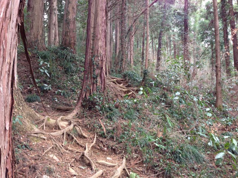 tenjikuyama05.jpg