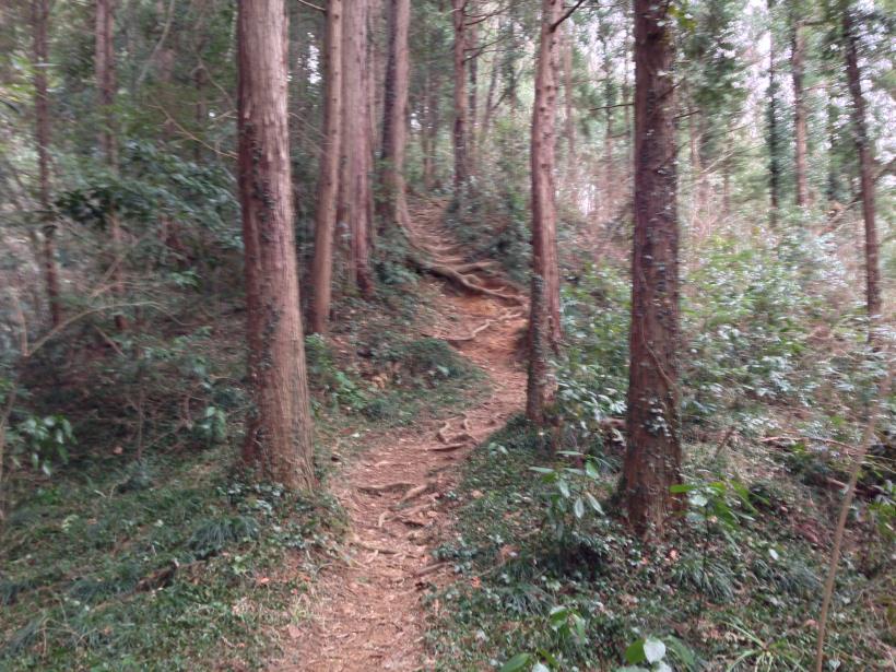 tenjikuyama06.jpg