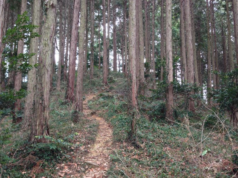 tenjikuyama15.jpg
