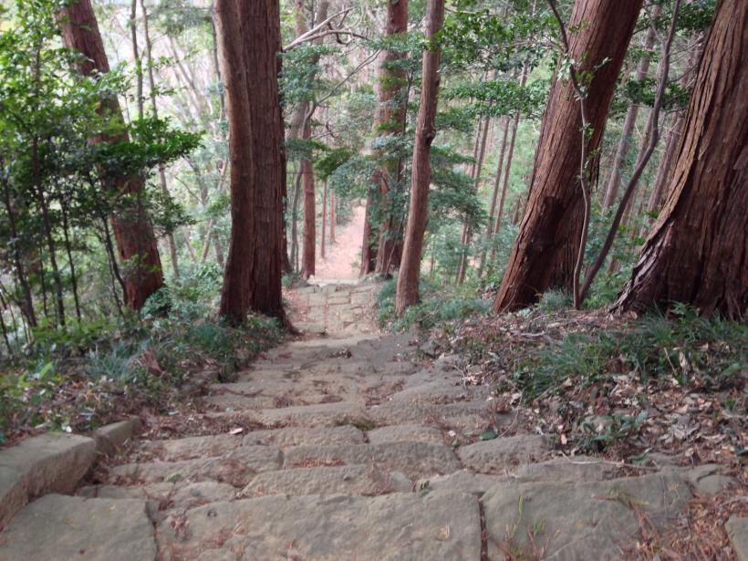 tenjikuyama18.jpg