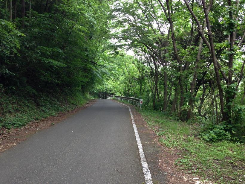 tobimura07.jpg