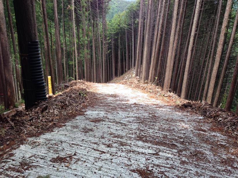 tobimura09.jpg