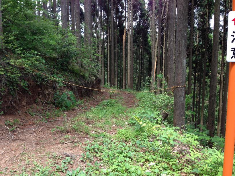 tobimura12.jpg