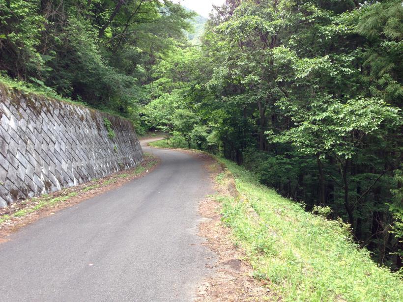 tobimura21.jpg