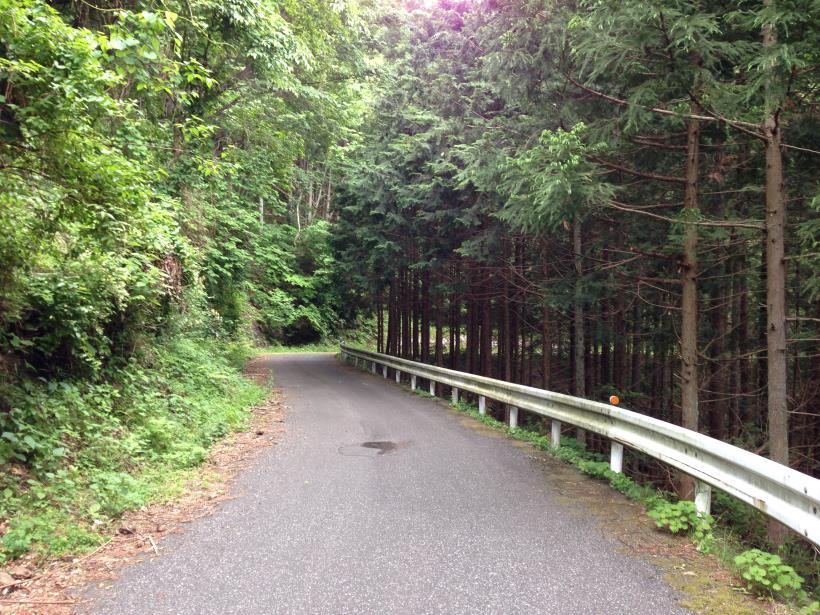tobimura31.jpg