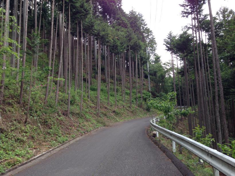 tobimura35.jpg