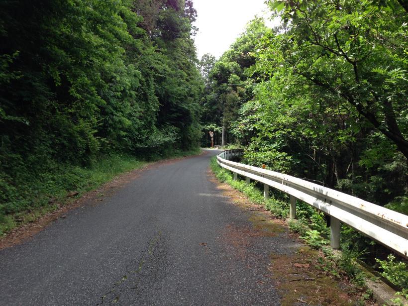 tobimura39.jpg