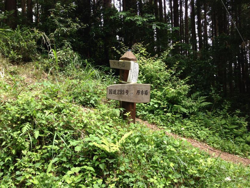 tobimura47.jpg