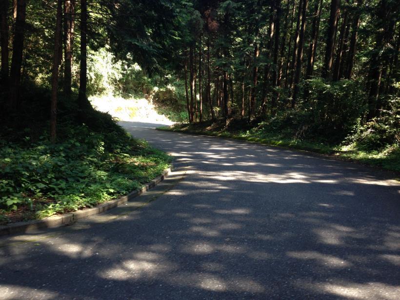 yatoku07.jpg