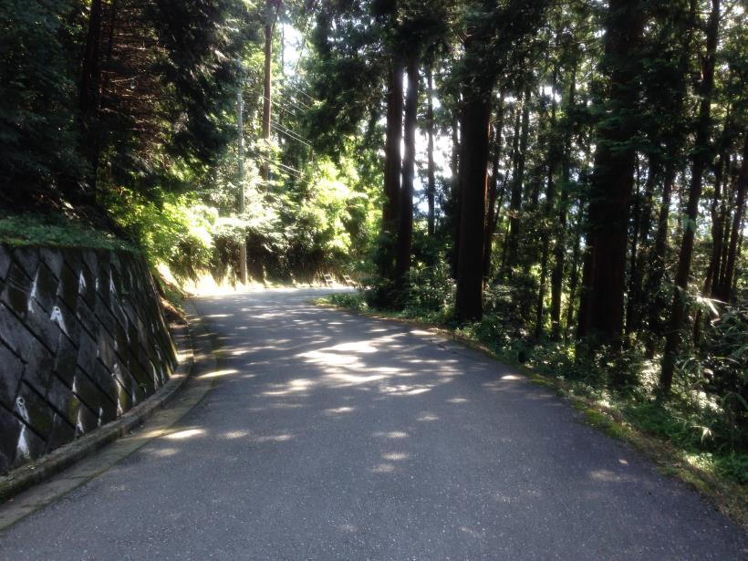 yatoku12.jpg