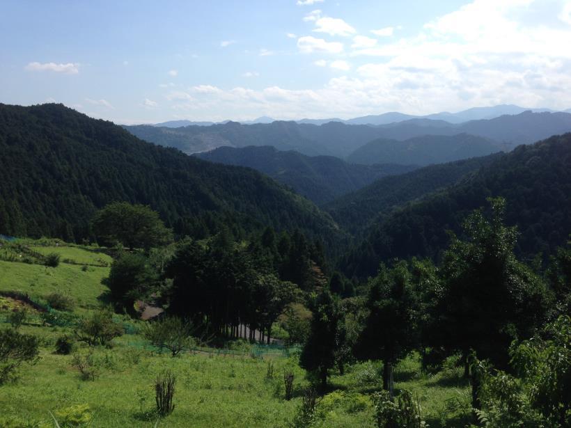 yatoku15.jpg