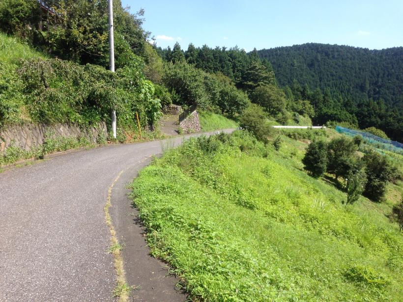 yatoku17.jpg