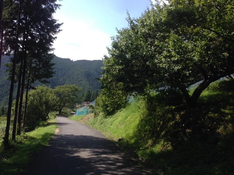 yatoku18.jpg