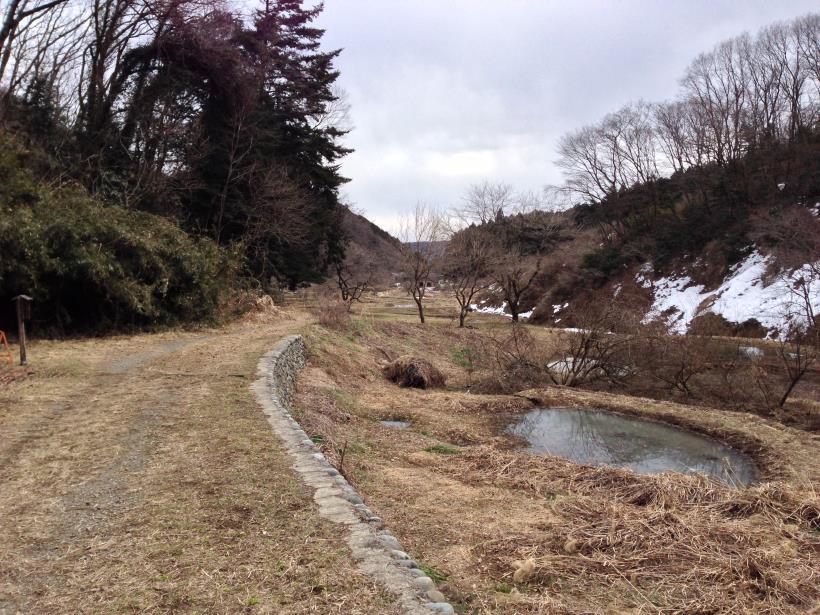 yokozawairisatoyama14.jpg