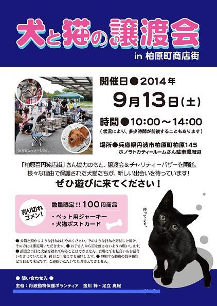 2014-9-13譲渡会ポスターblog用