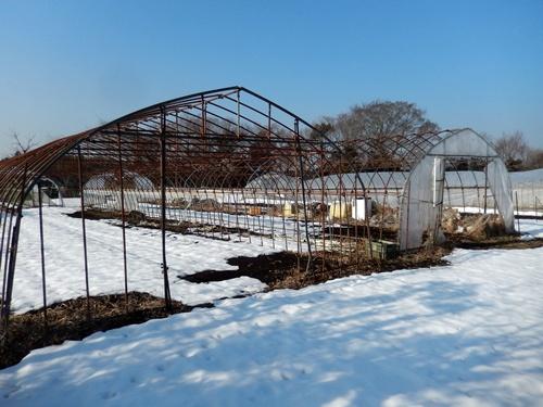 2014.2.21 大雪のハウス被害(林農園) 013