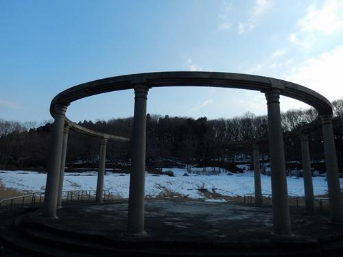 2014.2.24 アカデミア公園の桜(苗木) 013