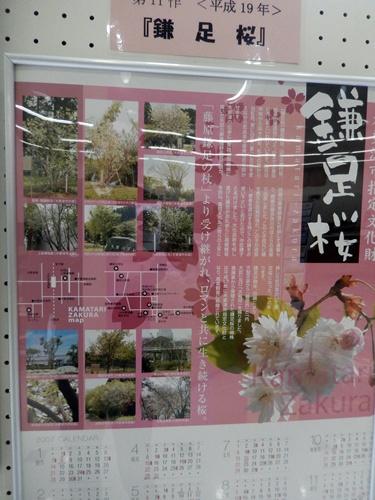 2014.2.24 千葉信用金庫(カレンダー展) 009 (4)