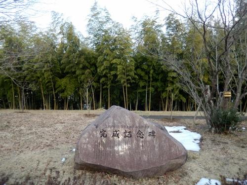 2014.2.24 アカデミア公園の桜(苗木) 010