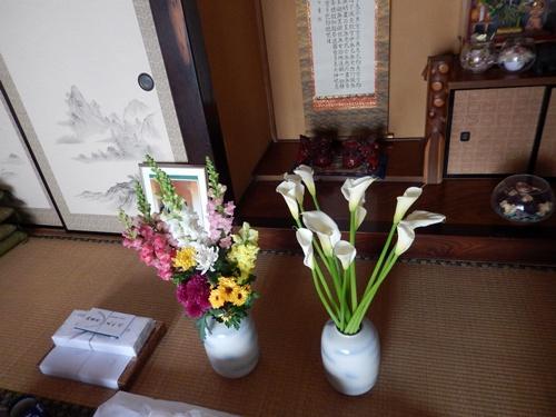 2014.2.26 勝帰る(自宅) 003