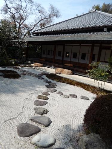 2014.3.9 鎌倉浄妙寺 (鎌足桜) 017