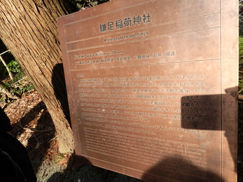 2014.3.9 鎌倉浄妙寺 (鎌足桜) 009