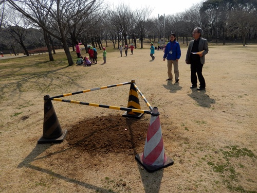 2014.3.12 青葉の森公園 (鎌足桜) 041 (5)