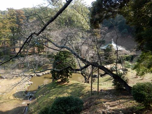 2014.3.17 長楽寺 (春景色) 016