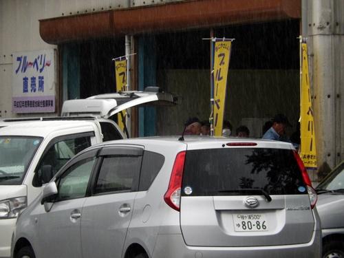 2014.6.11 富ク来田のブルーベリー出荷 046 (1)