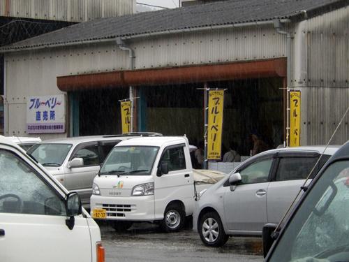 2014.6.11 富ク来田のブルーベリー出荷 046