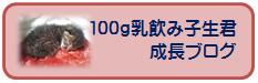 100gニャンコ生君の成長ブログ