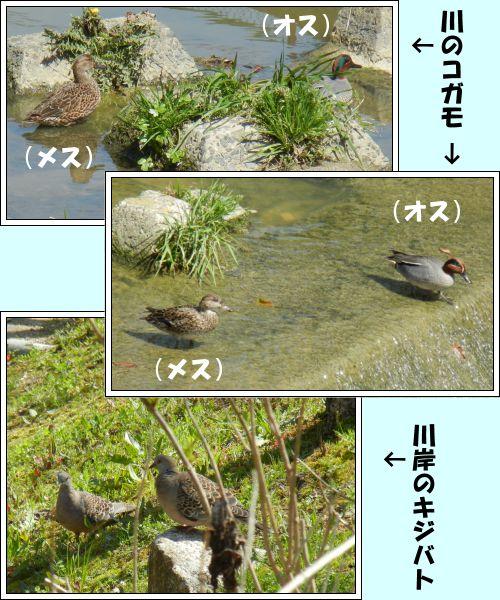 20140328-05.jpg