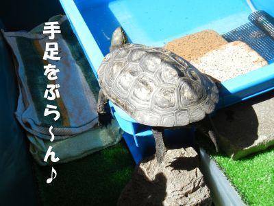 20140909-01.jpg