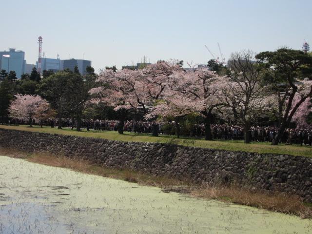 皇居東御苑へ向かう橋から撮影