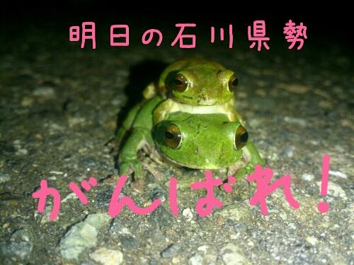 fc2_2014-05-10_20-19-10-127.jpg