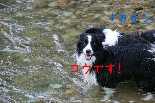 fc2_2014-09-17_23-56-34-792.jpg
