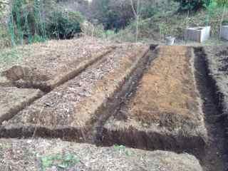3:17・畝作り2