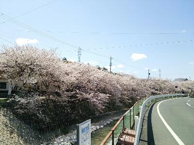 fc2_2014-04-03_22-14-43-882.jpg