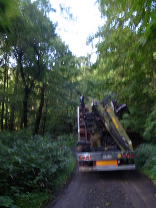 林道トラック