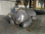 JR袋井駅 水飲み場の猫