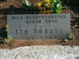 関東鉄道新取手駅 the beauty 説明