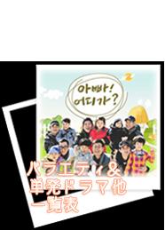 2014バラェティ&単発ドラマ一覧
